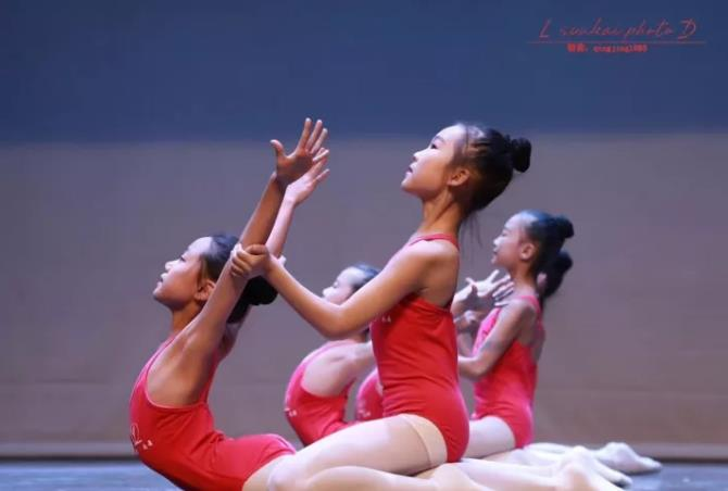 山东中外舞蹈协会